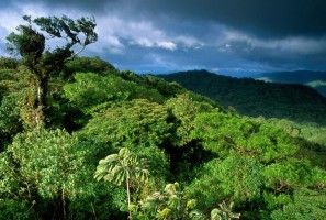 Scientific Tourism - Costa Rica and Belize